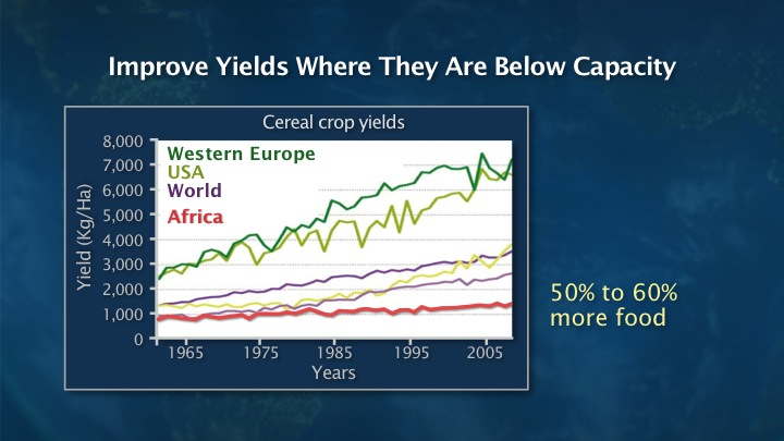 Improve yields where they are below capacity.