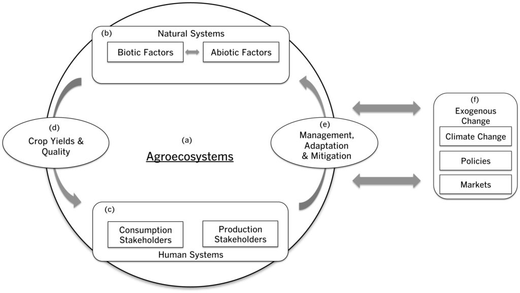 Socio-ecological systems framework to examine climate effects of crop quality and farmer responses.This socio-ecological systems framework integrates two underutilized concepts on specialty crop quality and agroecological management that can be applied for future studies on climate effects on specialty crop systems. Agroecosystems (Figure 4a) are the foundation of this framework with natural (or biophysical) components (Figure 4b) that produce crops and human components that interact with these crops (Figure 4c) through dynamic feedbacks (Figure 4d and 4e). Consumers (Figure 4c) may perceive changes in crop yields and quality (Figure 4d) via market signals and sensory profiles that may be more or less desirable for consumers depending on their preferences. Farmers and other natural resource managers may alter the way they manage their agroecosystems in response to consumer decision-making and markets as well as on the basis of their own direct observations, knowledge, and social networks through a range of management, adaptation, and mitigation strategies (Figure 4e). The large arrows linking the agroecosystem (Figure 4a) to exogenous change (Figure 4f) highlights that agroecosystems are human-managed ecosystems that impact, and are impacted by, exogenous variables.