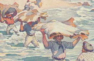 Rethinking Capitalism from New York to Hawaiʻi